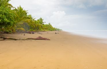 panama-chiriqui-playa-las-lajas