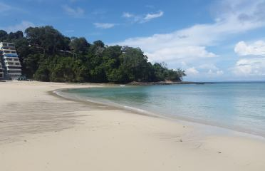 panama-pearl-islands-isla-contadora