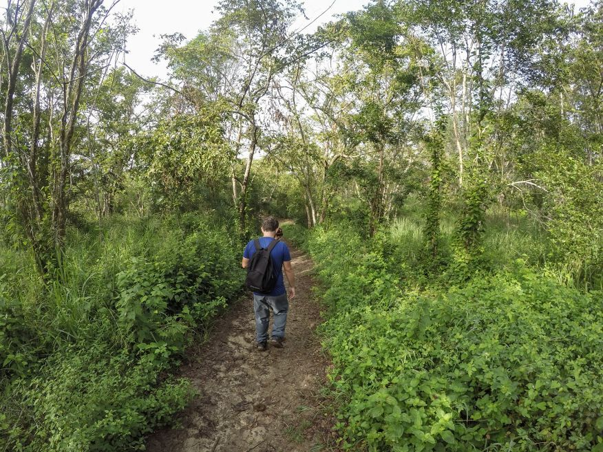 Nature walk on the way to Flamingo Tour Cienfuegos Cuba