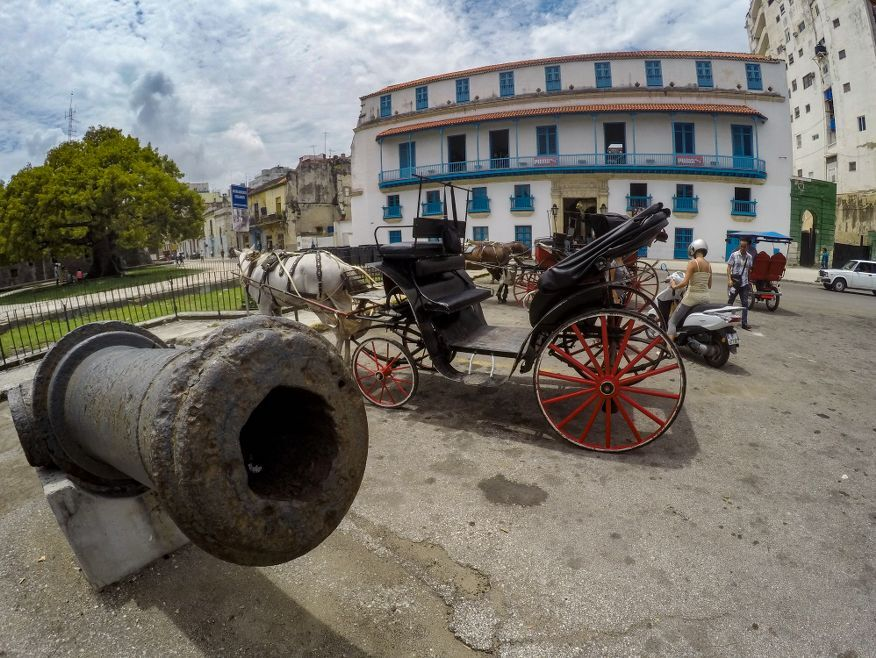 Horse and buggy tour Havana