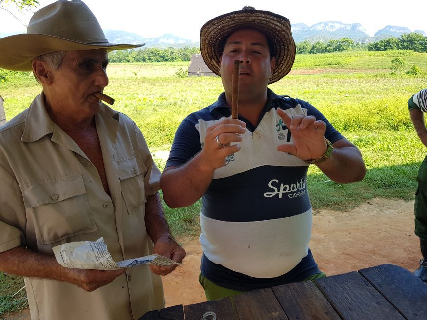 Just completed hand rolled cigar horse ride tour from Vinales