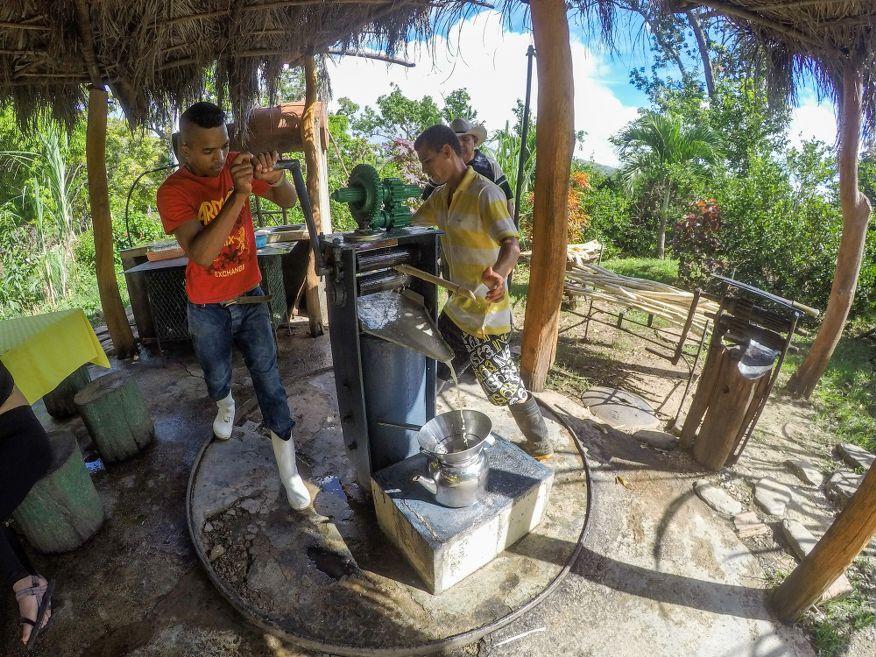 Squeezing sugar cane juice Horse Ride Tour to Waterfalls Trinidad Cuba
