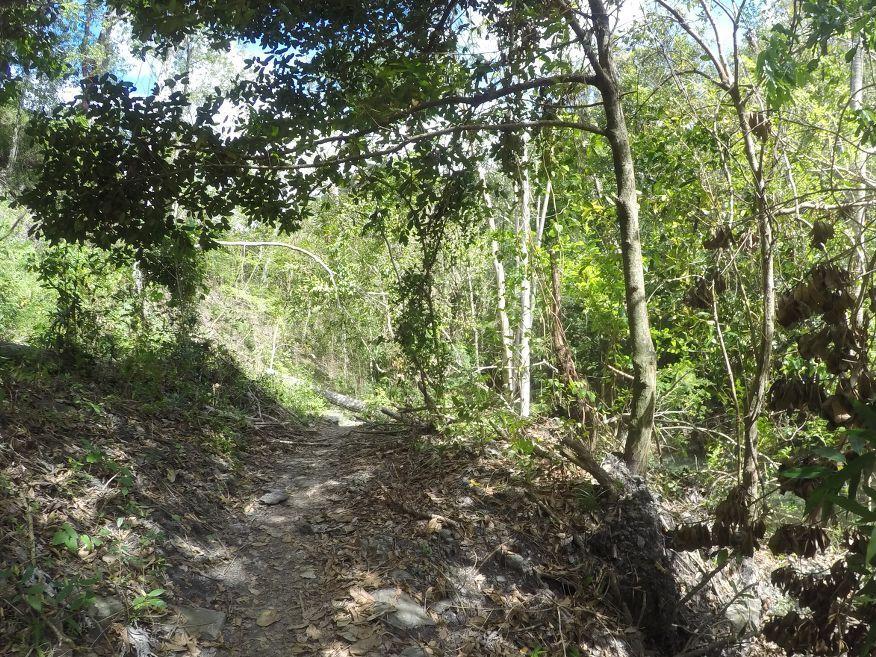Walk to waterfall Horse Ride Tour to Waterfalls Trinidad Cuba
