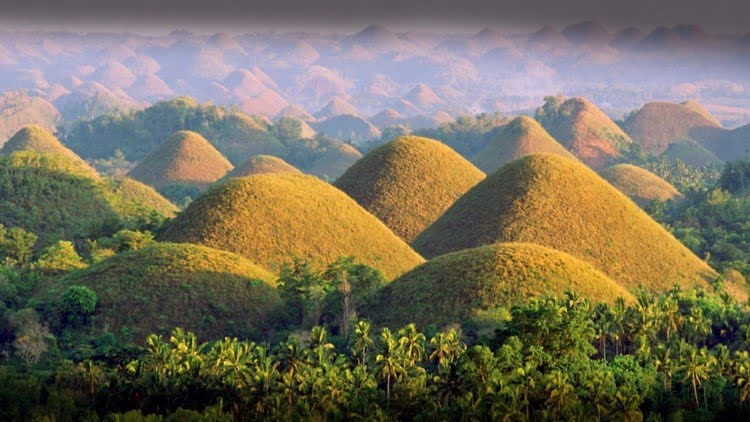 Top things to do in Bohol