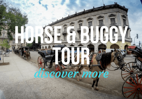 Horse and Buggy Tour in Old Havana, Cuba