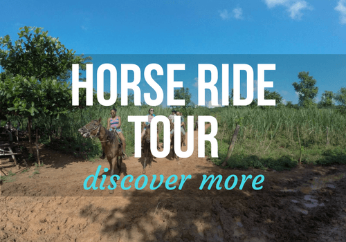 Horse Riding Tour in Vinales