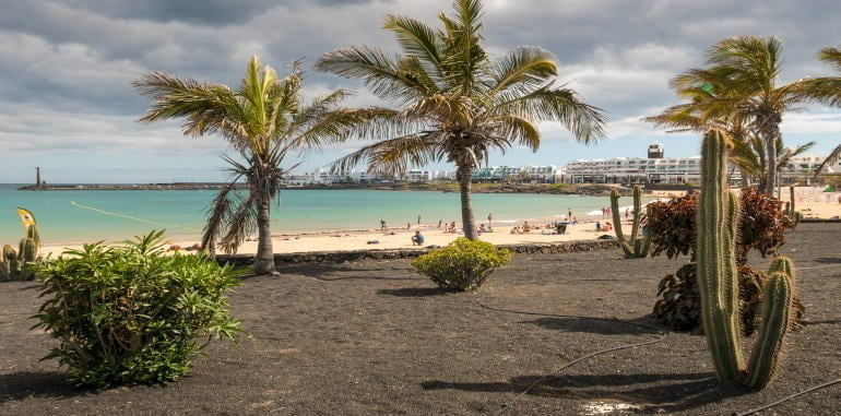 costa-teguise-palm-trees-beach-with-cactus-view-of-shoreline-hotel_strip