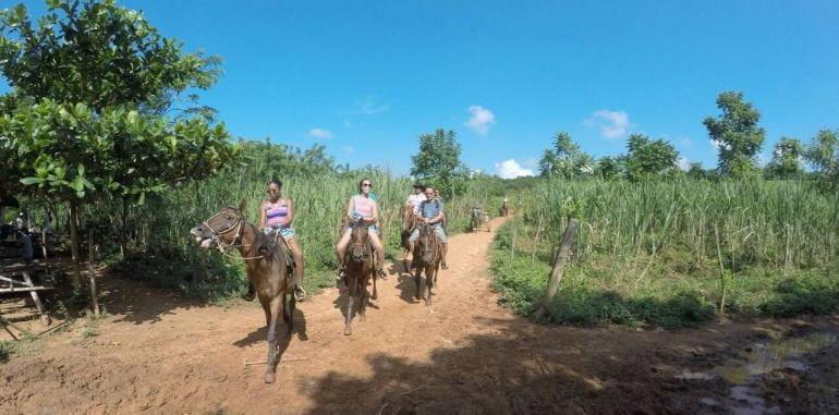 Waterfall Horse Riding Tour