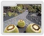 Lanzarote Nature Attractions