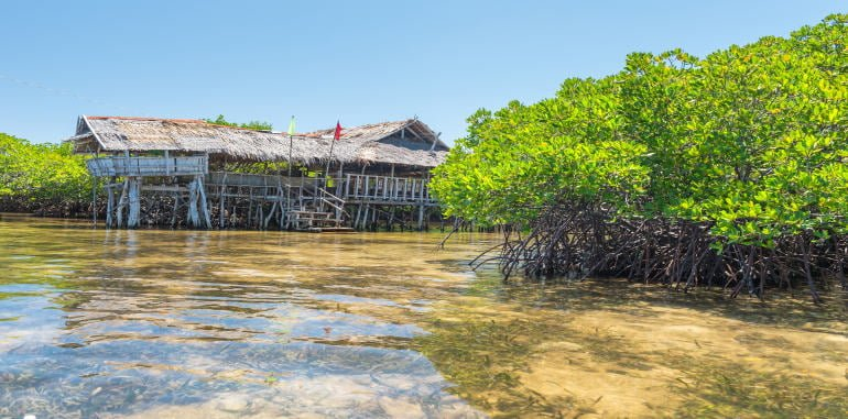 philippines-bohol-lamanoc-island-in-anda-mangrove-foerest-edge-with-traditional-rickety-wooden-house-straw-roof